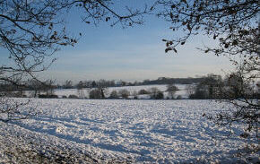 Snow across the fields - link to Cold Snaps in Ingatestone site